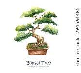 watercolor tree bonsai. hand...