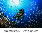 Scuba diving with fish on coral ...