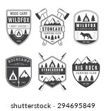 set of vintage camping labels ... | Shutterstock . vector #294695849