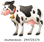 Close Up Cow With Collar Bell