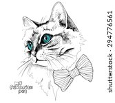 Stock vector portrait cat with blue eyes in a tie vector illustration 294776561