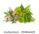 Herbs Nettle  Celandine  Red...