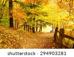 Autumn Scene Landscape At...