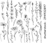 floral doodle set of ink drawn... | Shutterstock .eps vector #294932897