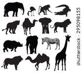 Set Of African Animals...