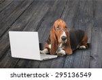 Dog  Computer  Pets.