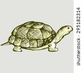 crawling slowly turtle. vector... | Shutterstock .eps vector #295182314