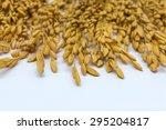 rice seeds | Shutterstock . vector #295204817