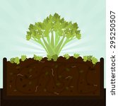 stalk of celery and compost.... | Shutterstock .eps vector #295250507