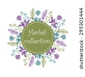 herbs collection on white... | Shutterstock .eps vector #295301444