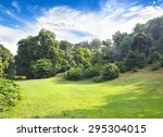 landscape with glade  bushes... | Shutterstock . vector #295304015