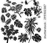 vector set of black silhouettes ... | Shutterstock .eps vector #295502387