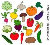 vector illustration   vegetables | Shutterstock .eps vector #295627829