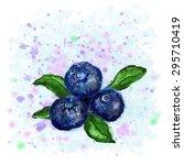 vector illustration three fresh ... | Shutterstock .eps vector #295710419