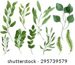 a set of watercolor leaves ... | Shutterstock . vector #295739579