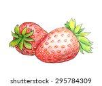 original strawberry drawn by... | Shutterstock .eps vector #295784309