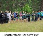 shua river  karelia region ... | Shutterstock . vector #295895159
