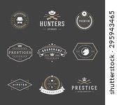 retro vintage logotypes or... | Shutterstock .eps vector #295943465
