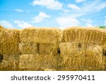 Square Bales In Field