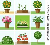garden  vegetable garden ... | Shutterstock .eps vector #295976777