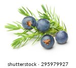 Juniper Berries Isolated On...