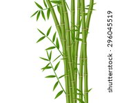 green bamboo stems with leaves... | Shutterstock .eps vector #296045519