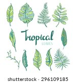 set of  tropical leaves... | Shutterstock .eps vector #296109185