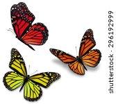 three colorful monarch...   Shutterstock . vector #296192999