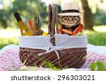 funny cat on a picnic.... | Shutterstock . vector #296303021