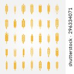 vector wheat ears icons set.... | Shutterstock .eps vector #296334071