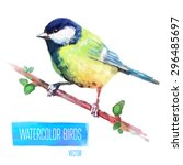 Tit Watercolor  Bird Isolated...