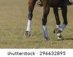 Horse Shoe Horse Pony Leg Meta...