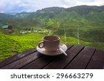 cup of tea in the beautiful tea ...   Shutterstock . vector #296663279