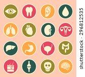 human organs icon | Shutterstock .eps vector #296812535
