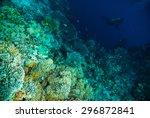 diver blue water scuba diving... | Shutterstock . vector #296872841
