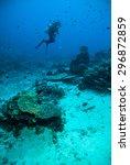 diver blue water scuba diving... | Shutterstock . vector #296872859