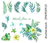 watercolor floral set for your... | Shutterstock .eps vector #296903915