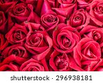 Stock photo bunch of rose 296938181