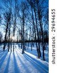 a picturesque winter forest... | Shutterstock . vector #29694655