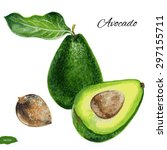 avocado  half of avocado ... | Shutterstock .eps vector #297155711