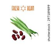 vector set of watercolor beans...   Shutterstock .eps vector #297189899