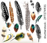 big set of detailed bird... | Shutterstock .eps vector #297274931