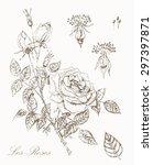 vintage rose botanical... | Shutterstock .eps vector #297397871