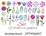 Vector Floral Set.collection...