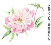 hand drawn watercolor... | Shutterstock .eps vector #297704861