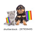 Stock photo puppy and kitten with rainbow color flag symbolizing gay rights isolated on white background 297959495