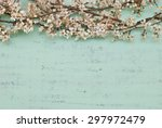 wood and flowers | Shutterstock . vector #297972479
