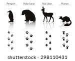 set of animal and bird trails... | Shutterstock .eps vector #298110431