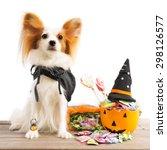 cute dog wearing a halloween... | Shutterstock . vector #298126577