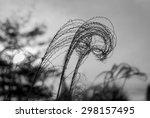 wispy willow. abstract art....   Shutterstock . vector #298157495